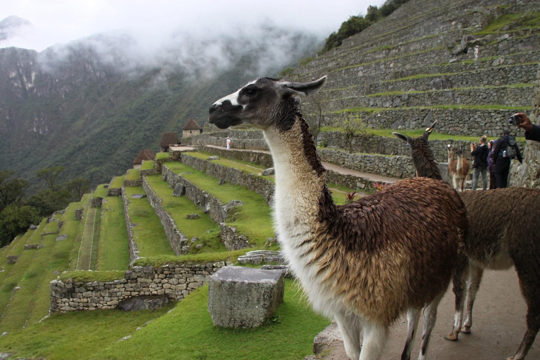 Peru and its Incan culture