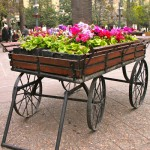 A flower cart in Santiago's Plaza de Armas.