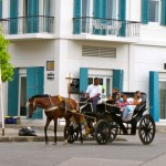 One of Cartagena's horse-drawn carriages taking visitors on a sightseeing ride in the Old Town.