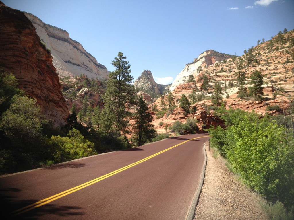 Along the Zion-Mt. Carmel Highway.
