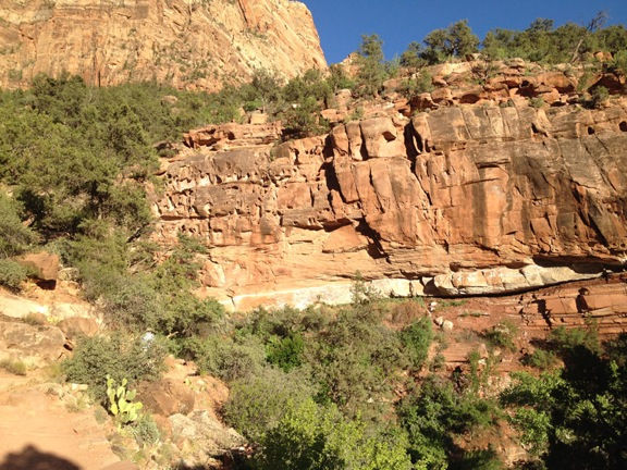 Zion Canyon wall, Zion National Park