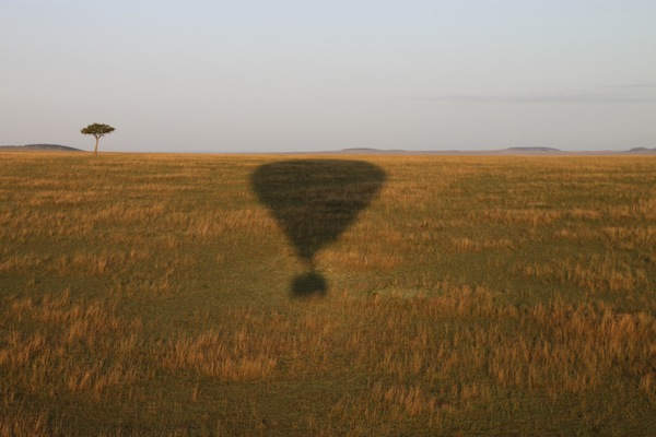 The shadow of our balloon seen against the richly colored Maasai Mara landscape.
